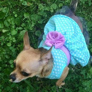 DOG CLOTHES Mint Green Dress XS NEW